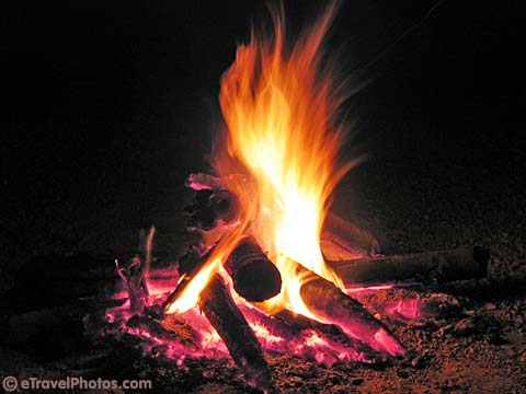 picture of a camp fire